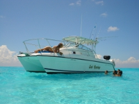 Boat Snorkeling Tour